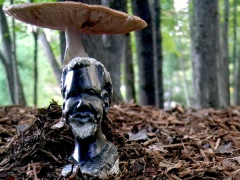 the-african-man-taking-shelter-in-the-forest